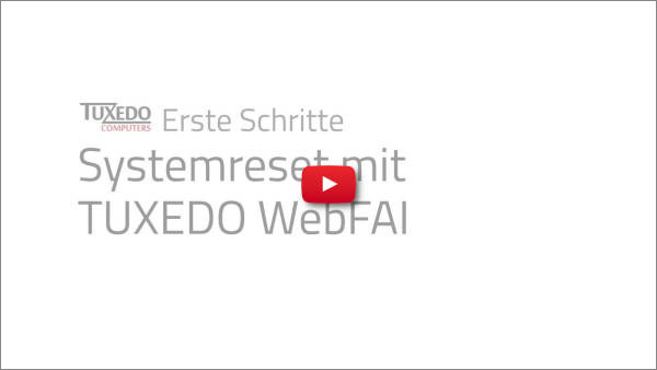 Zur Video-Demo